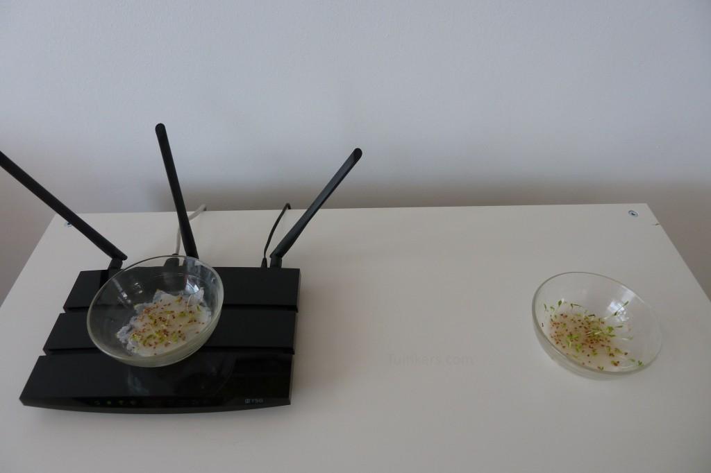 Wi-Fi tuinkersexperiment Dag 6 wifi router